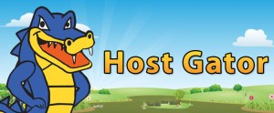 server support (Hosting) 24x7x365 involved (Hosting) 24x7x365 ჩართული