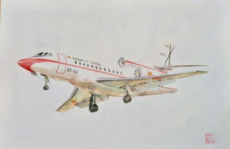 cuadro avión Falcon 900