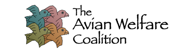 Image result for the avian welfare coalition