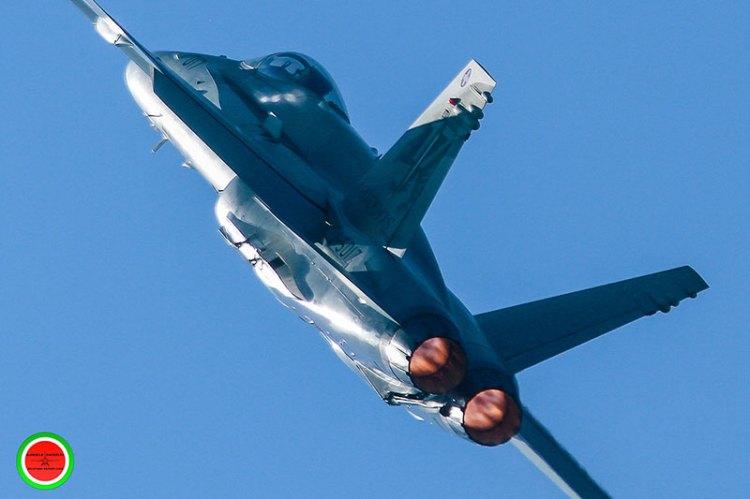 demo F/A-18 Hornet Swiss Air Force