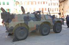 Esercito Italiano Puma 6x6