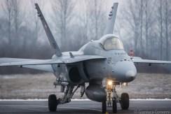 F-18 Hornet WEF 2019