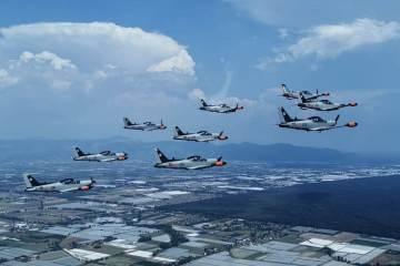 50000 ore di volo SF-260EA 70° Stormo Aeronautica Militare