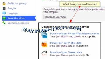 Google+ data download - How to download Google+ data (profile, contacts, streams, picasa, buzz)