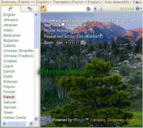 Translate2 480x431 - Dictionary .NET 3.0 : dictionary for almost every language