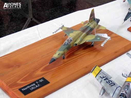 Concurso_LaPlata_aviones_31
