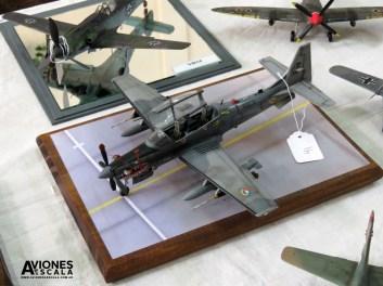 Concurso_LaPlata_aviones_37