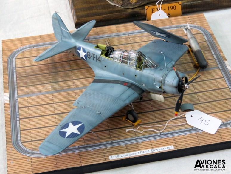 Concurso_LaPlata_aviones_39