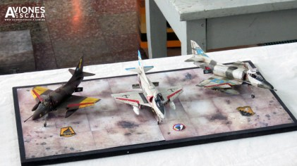 Concurso_LaPlata_aviones_42