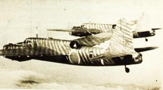 Gki49-1