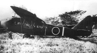 Gki59-2
