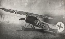 Gfokkerev-2