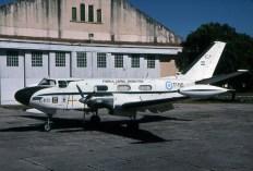 Gia50-2