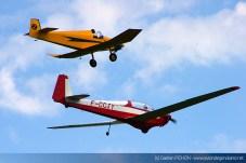 Scheibe SF-28A Tandem Falke et Bébé Jodel