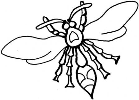 Dibujos de avispas » AVISPAPEDIA