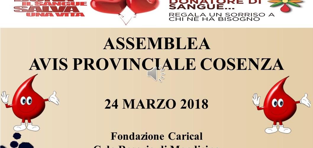 Assemblea Avis Provinciale Marzo 2018