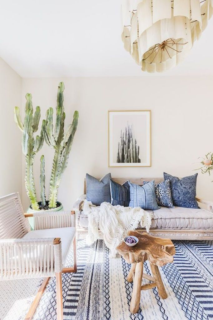 Blue living room with giant cactus
