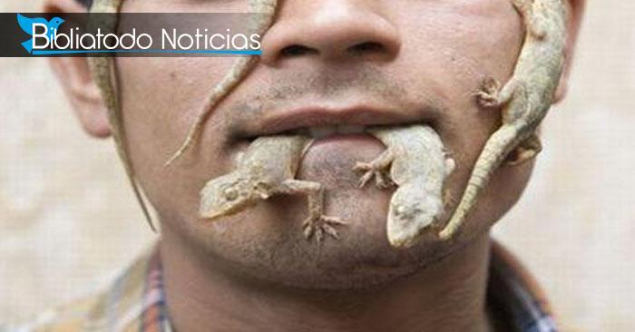 Muere podrido por comerse un lagarto tras perder una apuesta