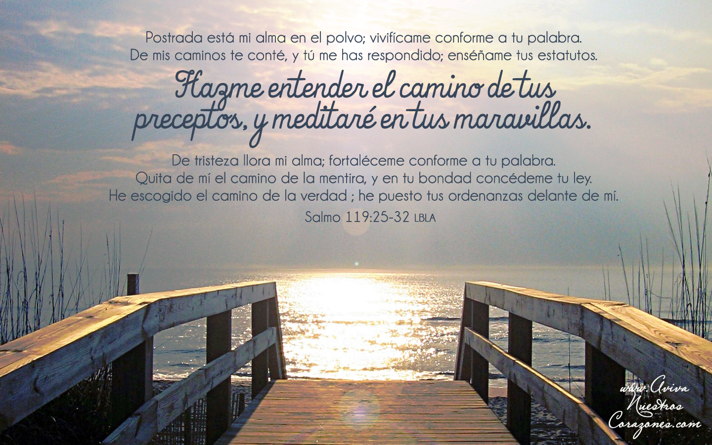 Christian Hd Wallpapers For Android Abr 14 Salmo 119 25 32 Wallpapers Aviva Nuestros