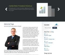 businesswp t style avjthemescom - Business Wordpress Theme