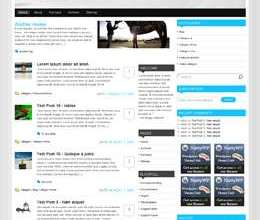deleux t style avjthemescom - Deluxe Wordpress Theme (Nattywp)