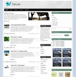 deleux t style vizor avjthemescom - Deluxe Wordpress Theme (Nattywp)