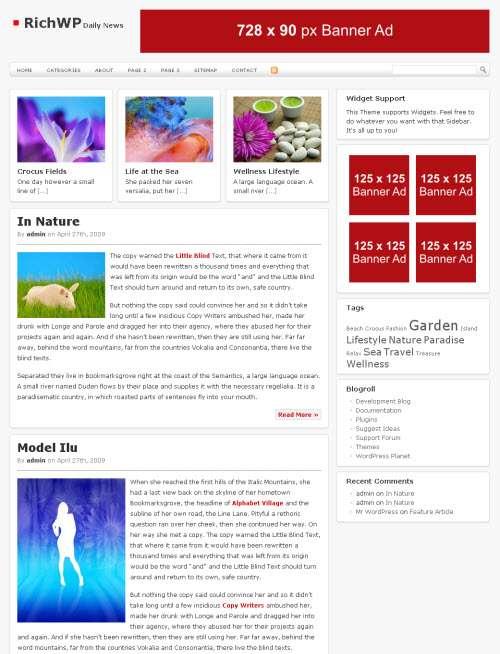 dailynews richwp avjthemescom - Daily News Premium Wordpress Theme