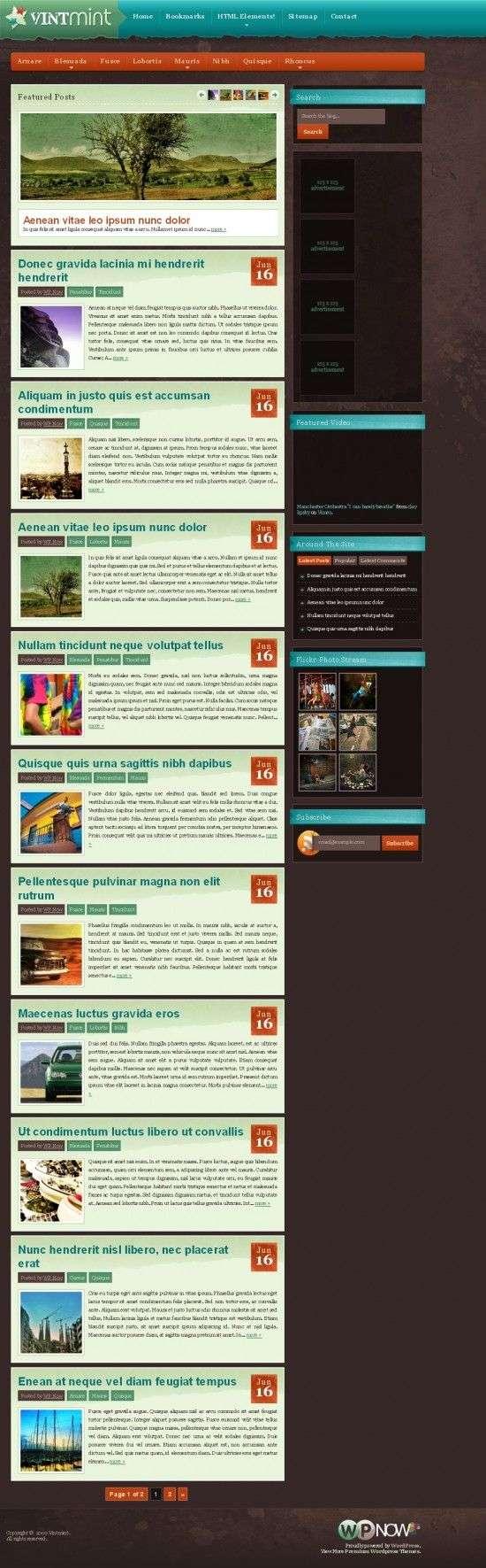 vintmint wpnow avjthemescom 550x1771 - VintMint WordPress Theme