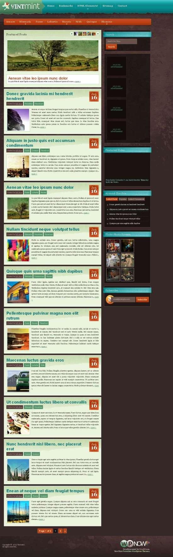 VintMint WordPress Theme