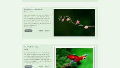 photonic avjthemescom nattywp - Photonic Wordpress Theme
