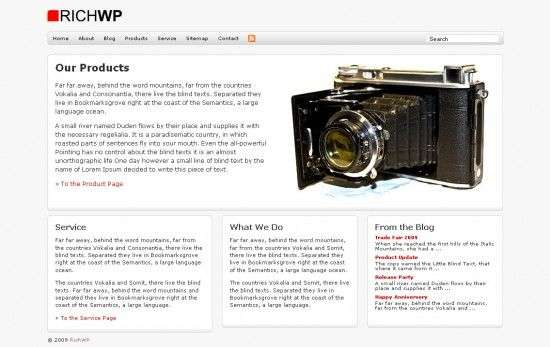 richbiz richwp avjthemescom 550x347 - RichBiz Wordpress Theme