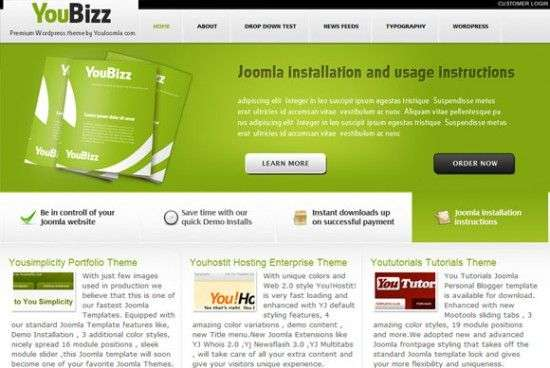 youbizz 550x368 - You!Joomla Premium Wordpress Themes