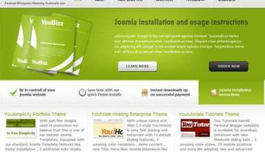 youbizz - You!Joomla Premium Wordpress Themes