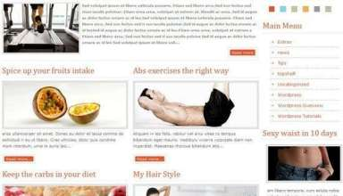 youfithess wordpress theme - YouFitness Premium WordPress Theme