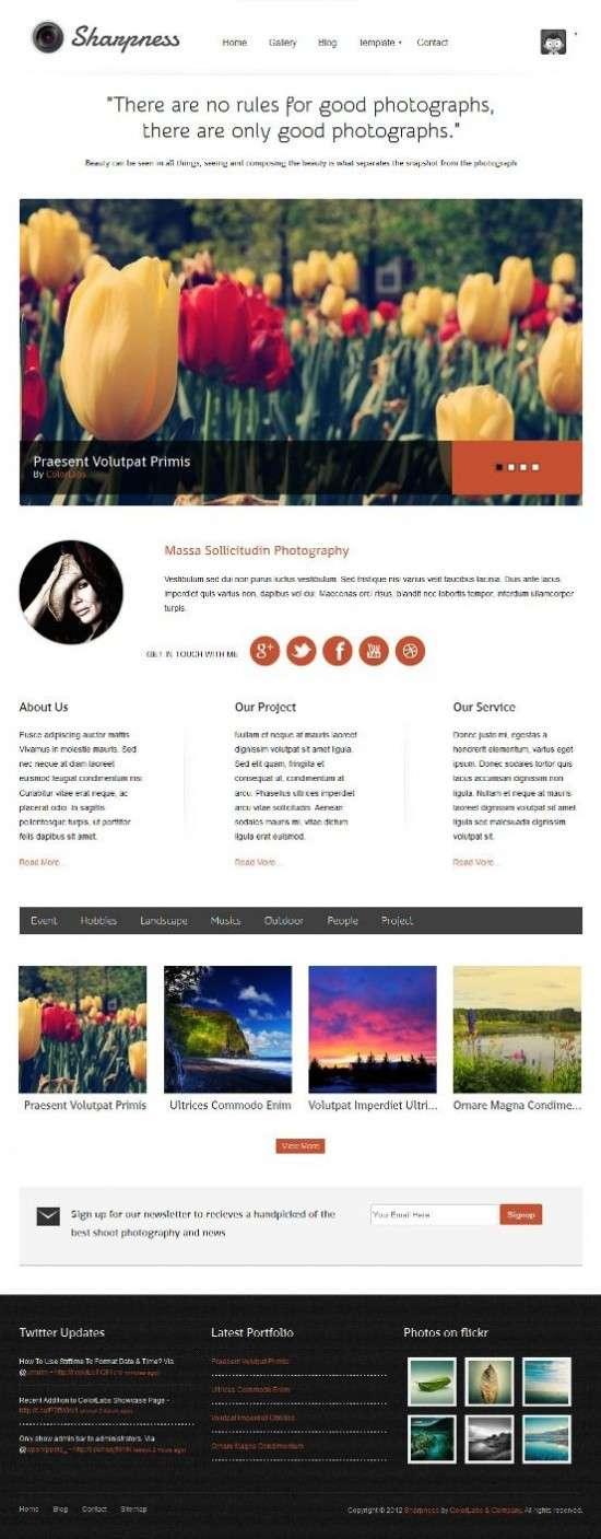 sharpness colorlabs avjthemescom 01 550x1407 - Sharpness WordPress Theme