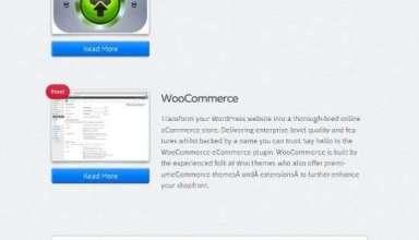 woothemes capital avjthemescom 01 - Capital WordPress Theme