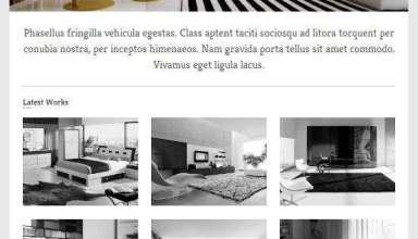 concept viva themes - Concept WordPress Theme