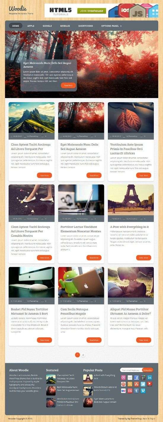 woodie mythemeshop avjthemescom 1 - Woodie WordPress Theme