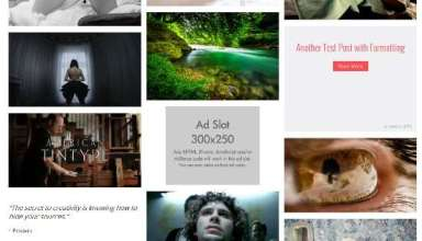 imagegrid richwp avjthemescom 01 - Imagegrid WordPress Theme