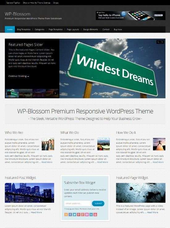 wp blossom solostream avjthemescom 01 - WP-Blossom WordPress Theme