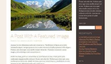 reddinger ithemes avjthemescom 01 - Reddinger WordPress Theme
