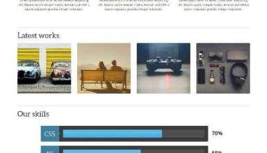 zoomy teslathemes avjthemescom 01 - Zoomy WordPress Theme