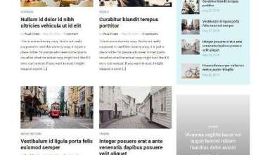 insight wpzoom magazine wordpress theme 01 - Insight WordPress Theme