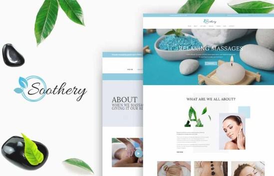 64365 big - 15 Amazing Beauty WordPress Themes 2018