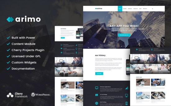 Software & Web-Development WordPress Theme