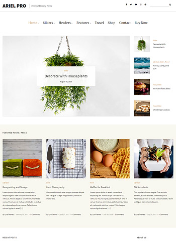 ariel pro 1 - LyraThemes WordPress Themes
