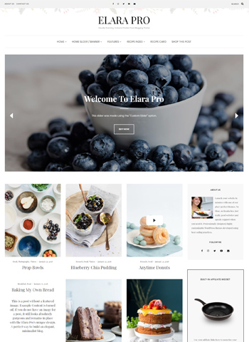 elara pro 1 - LyraThemes WordPress Themes