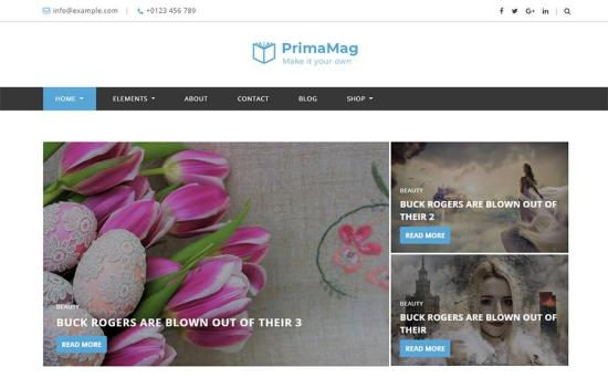 PrimaMag WordPress Theme