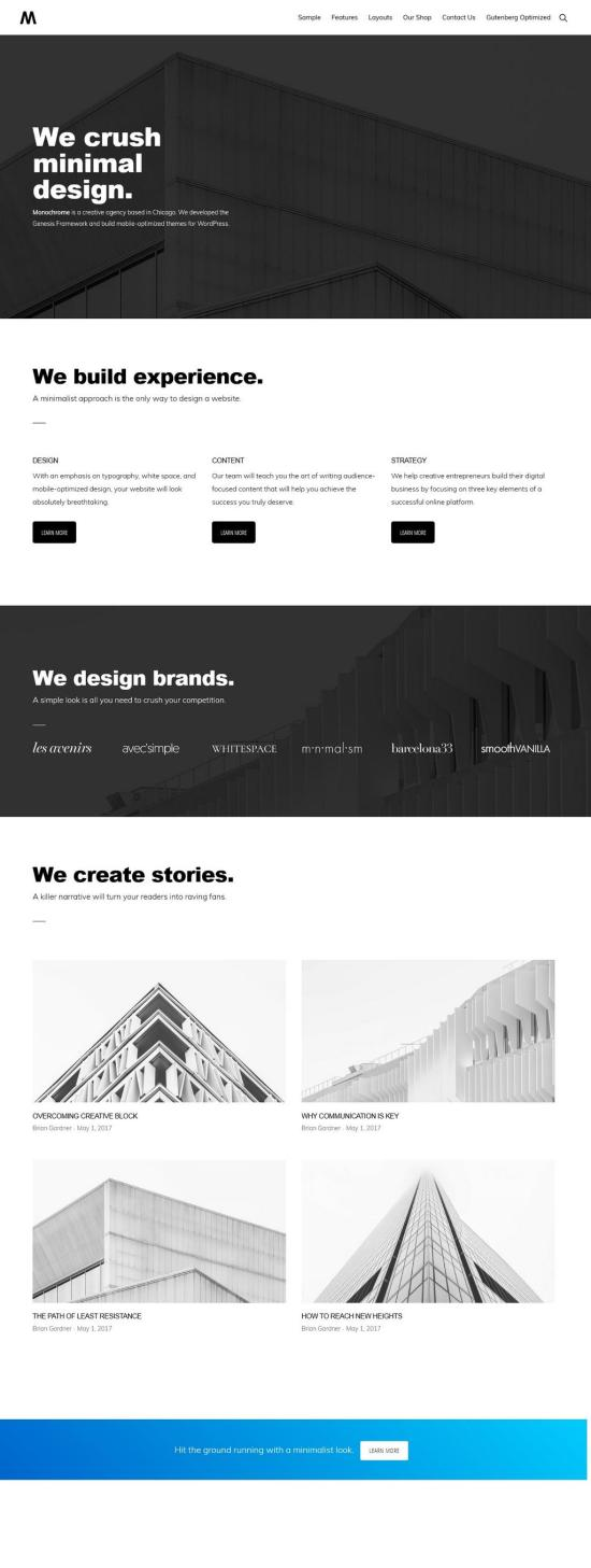 Monochrome Pro WordPress Theme Demo