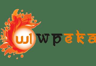 wpeka - 25% Off On WPEKA Premium WordPress Plugins
